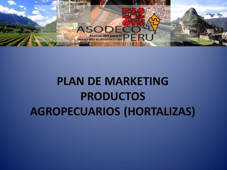 PLAN DE MARKETING PRODUCTOS AGROPECUARIOS (HORTALIZAS)