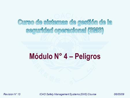 Revision N° 13ICAO Safety Management Systems (SMS) Course06/05/09 Módulo N° 4 – Peligros.