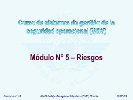 Revision N° 13ICAO Safety Management Systems (SMS) Course06/05/09 Módulo N° 5 – Riesgos.