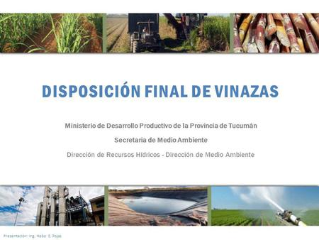DISPOSICIÓN FINAL DE VINAZAS