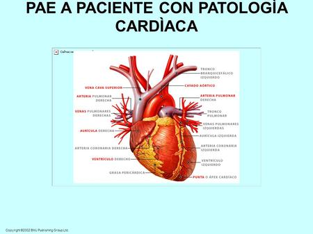 Copyright ©2002 BMJ Publishing Group Ltd. PAE A PACIENTE CON PATOLOGÌA CARDÌACA.