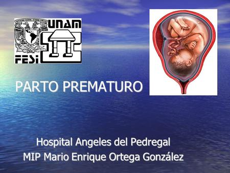 Hospital Angeles del Pedregal MIP Mario Enrique Ortega González