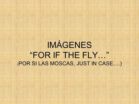 "IMÁGENES ""FOR IF THE FLY…"" (POR SI LAS MOSCAS, JUST IN CASE….)"