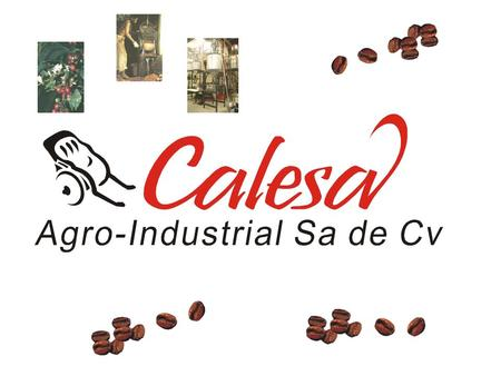The Company CALESA® Agro-Industrial Sa de Cv was created in 2000