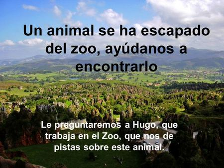 Un animal se ha escapado del zoo, ayúdanos a encontrarlo