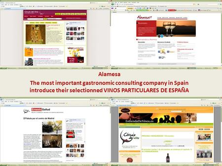 V Alamesa The most important gastronomic consulting company in Spain introduce their selectionned VINOS PARTICULARES DE ESPAÑA.