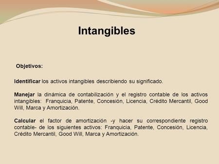 Intangibles Objetivos: