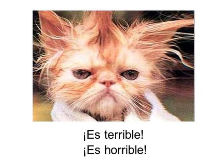 ¡Es terrible! ¡Es horrible!. ¡Es imposible! ¡ Es posible! ¡ No es posible!