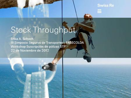 Stock Throughput Erika A. Schoch