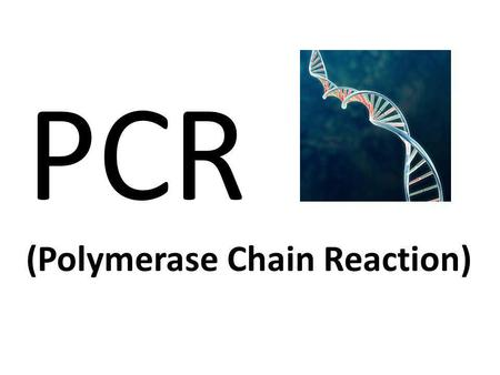 PCR (Polymerase Chain Reaction).