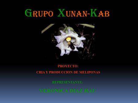 Proyecto vivero las orquideas ppt descargar for Viveros en salto