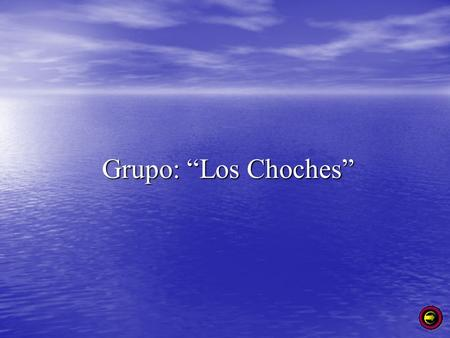 "Grupo: ""Los Choches""."