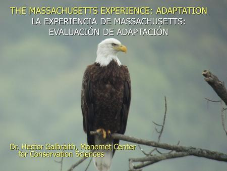 THE MASSACHUSETTS EXPERIENCE: ADAPTATION LA EXPERIENCIA DE MASSACHUSETTS: EVALUACIÓN DE ADAPTACIÓN Dr. Hector Galbraith, Manomet Center for Conservation.