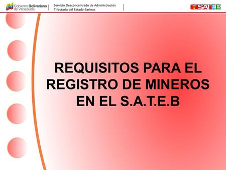 REQUISITOS PARA EL REGISTRO DE MINEROS EN EL S.A.T.E.B.