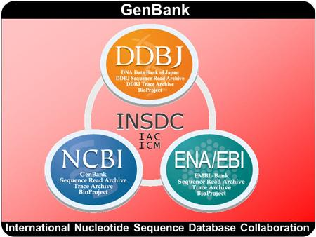 International Nucleotide Sequence Database Collaboration
