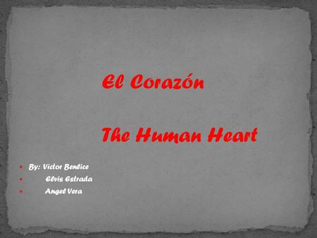 El Corazón The Human Heart By: Victor Benlice Elvis Estrada Angel Vera.