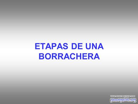 ETAPAS DE UNA BORRACHERA