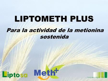 LIPTOMETH PLUS Para la actividad de la metionina sostenida … the green way of life.