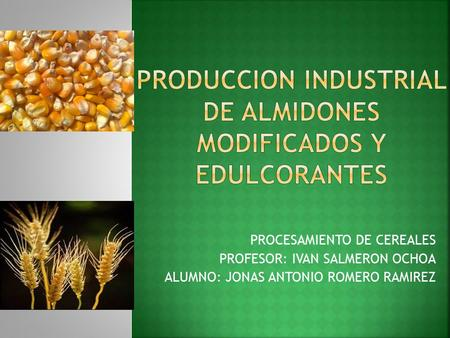 PRODUCCION INDUSTRIAL DE ALMIDONES MODIFICADOS Y EDULCORANTES