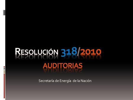 Resolución 318/2010 Auditorias