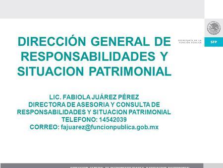 Declaraci N Patrimonial Rgano Interno De Control En El