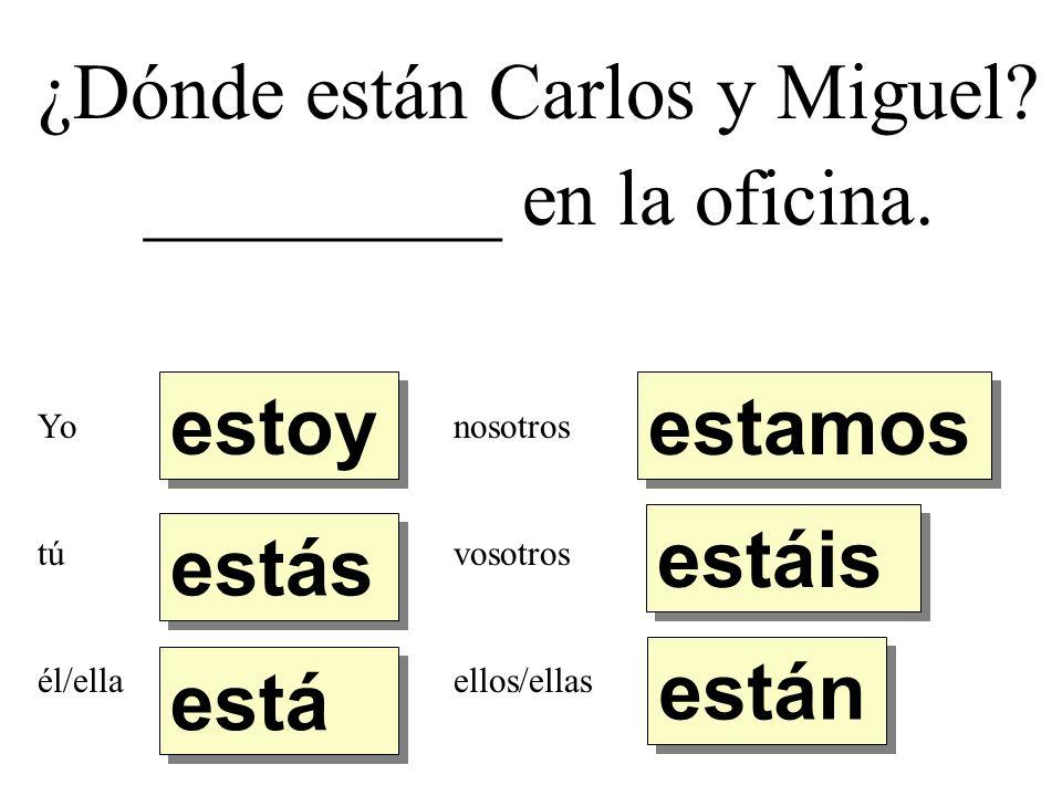 ¿Dónde están Carlos y Miguel._________ en la oficina.