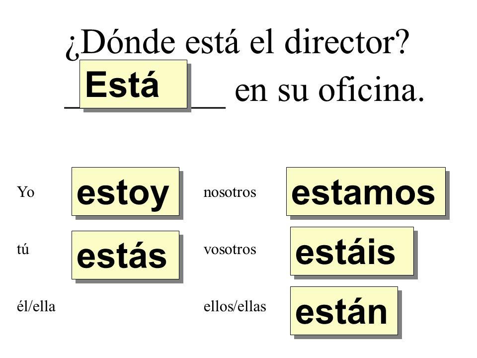 ¿Dónde está el señor Díaz._________ en el teatro.