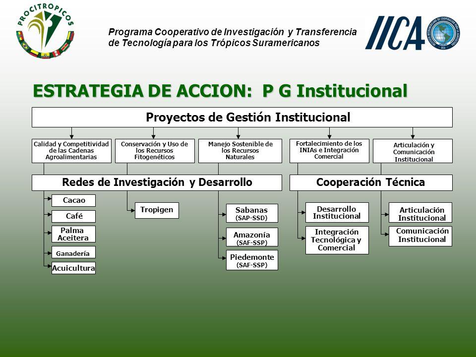 ESTRATEGIA DE ACCION: Implementación de R I&D AmazoníaPiedemonteSabanas Red de Investigación y Desarrollo Programa Cooperativo de Investigación y Transferencia de Tecnología para los Trópicos Suramericanos Actividades Coordinadores Nacionales Bolivia Seguimiento y Evaluación Talleres Foros Virtuales Brasil Colombia Ecuador Perú Surinam Venezuela Proyectos de I&D Capacitación Intercambio de Información y Conocimiento Coordinador de la Red