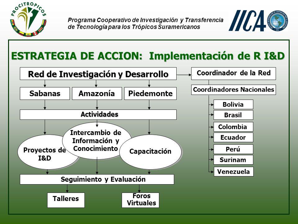 Programa Cooperativo de Investigación y Transferencia de Tecnología para los Trópicos Suramericanos LOGROS RECIENTES