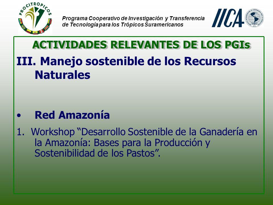 Programa Cooperativo de Investigación y Transferencia de Tecnología para los Trópicos Suramericanos - Belém Desarrollo Sostenible de la Ganadería - Belém