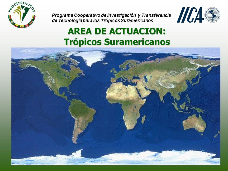 AREA DE ACTUACION: Sabanas Programa Cooperativo de Investigación y Transferencia de Tecnología para los Trópicos Suramericanos