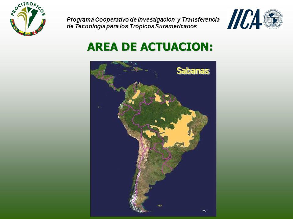 AREA DE ACTUACION: Amazonía Programa Cooperativo de Investigación y Transferencia de Tecnología para los Trópicos Suramericanos