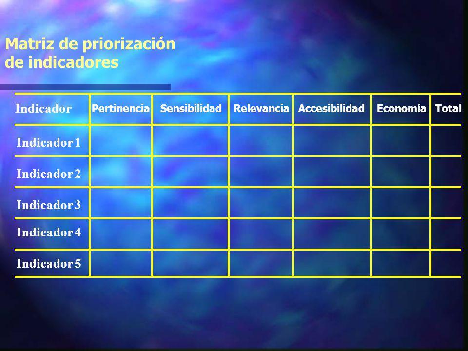 Matriz de priorización de indicadores Indicador 1 Indicador Indicador 2 Indicador 3 Indicador 4 Indicador 5 PertinenciaSensibilidadRelevanciaAccesibilidadEconomíaTotal