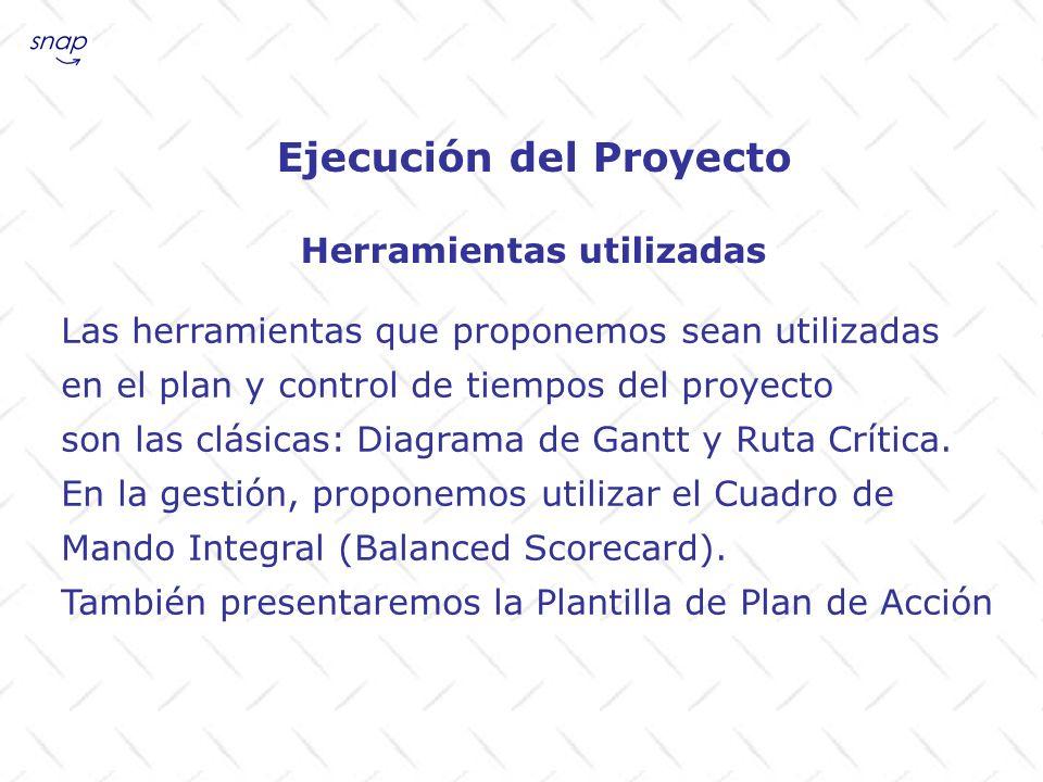 Ejecución del Proyecto pmi.org (Project Management Institute) 5campus.com (ver allí links) bscol.com (Balanced Scorecard Collaborative) strategicsimulation.com (PA Associates) Se les sugiere visitar los sitios en Internet: