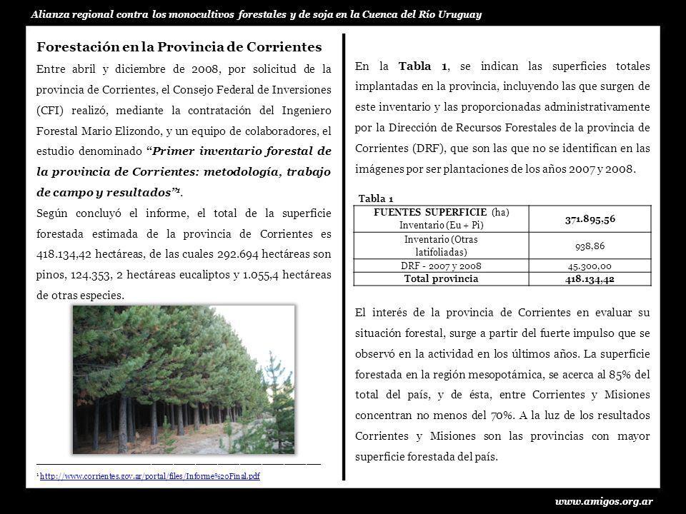 En la Tabla 2, se observa que el 76,94 % de la superficie total abarca cuatro departamentos: Santo Tomé, Ituzaingó, Paso de los Libres y Concepción.