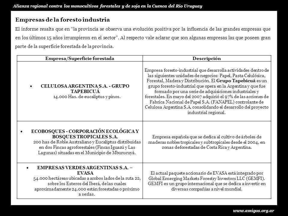 www.amigos.org.ar Alianza regional contra los monocultivos forestales y de soja en la Cuenca del Río Uruguay ENRIQUE ZENI S.A.