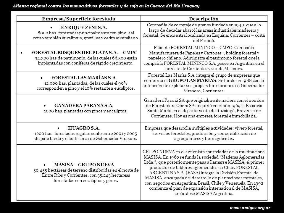 www.amigos.org.ar Alianza regional contra los monocultivos forestales y de soja en la Cuenca del Río Uruguay Empresa/Superficie forestadaDescripción POMERA MADERAS 42.000 ha forestales, Con más de 6.000 ha de pinos, y 11.000 ha eucaliptos.