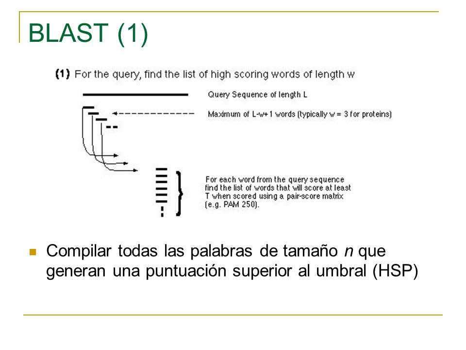 BLAST (2) Comparar estas palabras con las secuencias en la BD pera identificar las identidades exactas (hits)