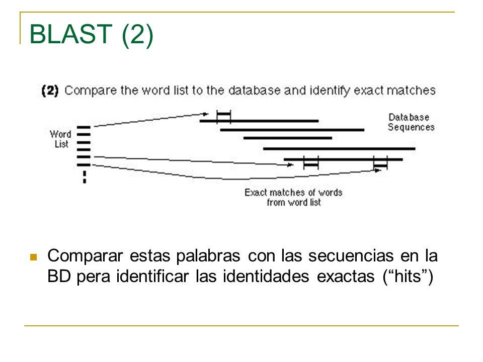 BLAST (3) Extender las palabras que han superado el umbral en ambas direcciones intentando mejorar la puntuacion La extensión concluye si la puntuacion desciende por debajo de otro umbral, si llega a cero, o si se acaba la secuencia.