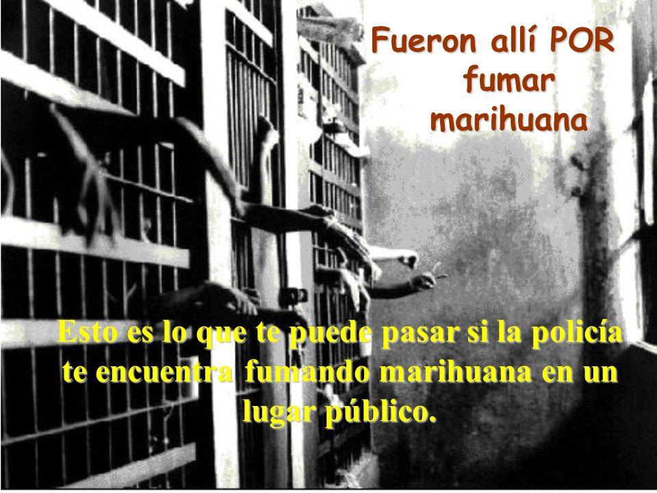 Juan Manuel Real Espinosa Revista de Didáctica MarcoELE Nº2 37 Esto es lo que te puede pasar si la policía te encuentra fumando marihuana en un lugar público.