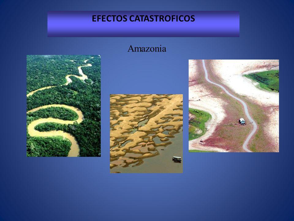 EFECTOS CATASTROFICOS Africa Sahel