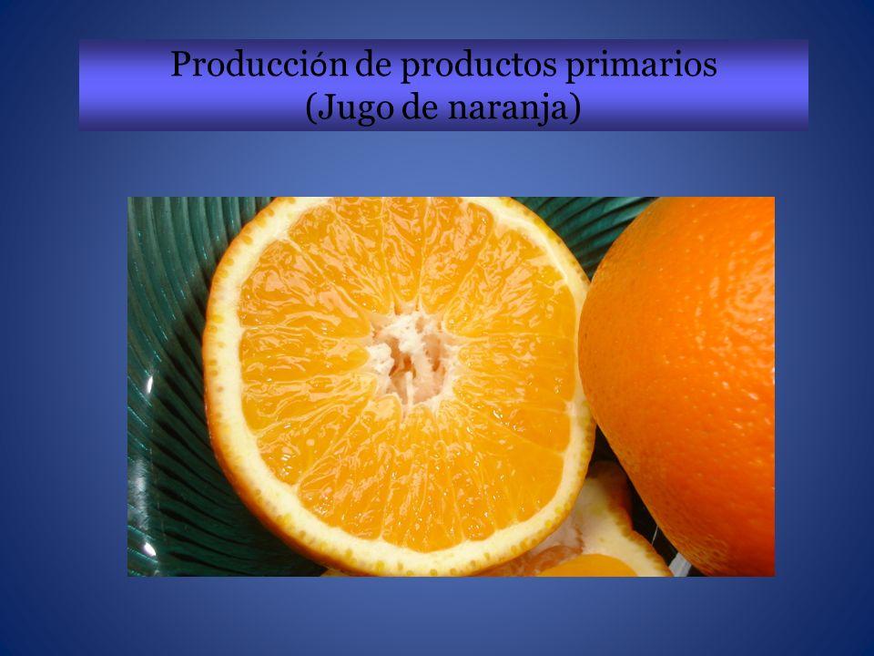 Cultivo de tejidos diferenciados de Citrus sinensis