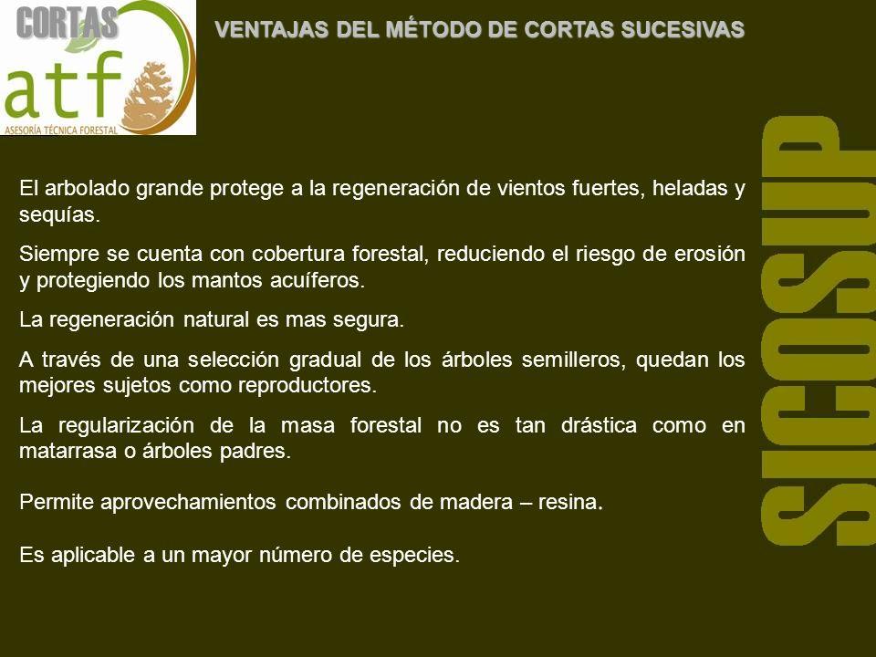 DESVENTAJAS DEL MÉTODO DE CORTAS SUCESIVAS * Se requiere de un mercado para productos de baja calidad y pequeñas dimensiones.