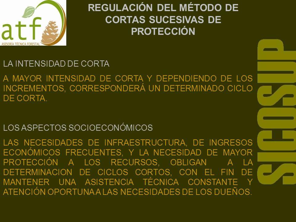 REGULACIÓN DEL MÉTODO DE CORTAS SUCESIVAS DE PROTECCIÓN LA DETERMINACIÓN DE LA POSIBILIDAD MADERABLE LA POSIBILIDAD MADERABLE ES LA CANTIDAD EN VOLUMEN DE MATERIAL LEÑOSO QUE SE PUEDE APROVECHAR ANUAL O PERIÓDICAMENTE EN UN BOSQUE CON LA CONDICION DE MANTENER SENSIBLEMENTE EL RENDIMIENTO CONSTANTE.
