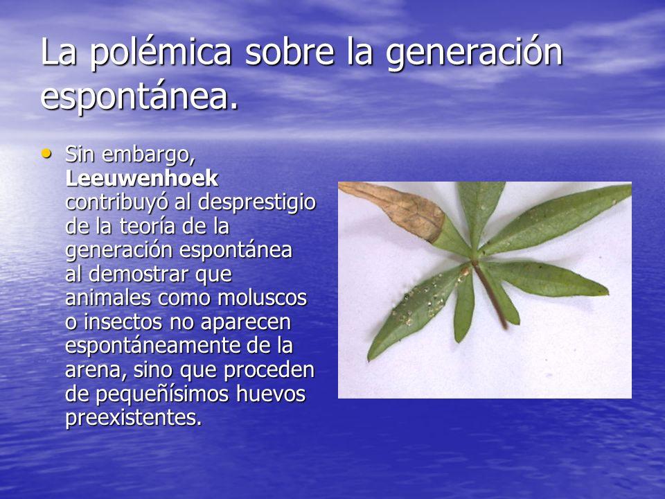 La polémica sobre la generación espontánea.Se desechó esta teoría para los organismos superiores.