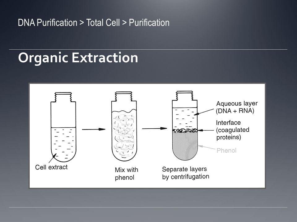 Extracción orgánica ¿Qué tal si hay un exceso de proteínas.