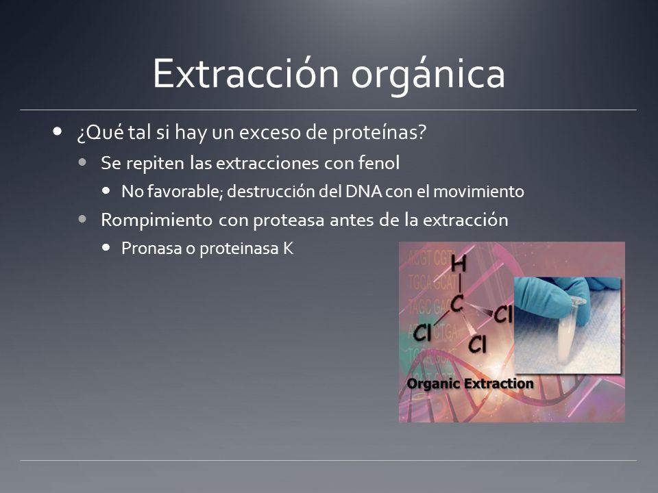 Extracción orgánica Parte del mRNA es removido con el tratamiento a fenol.