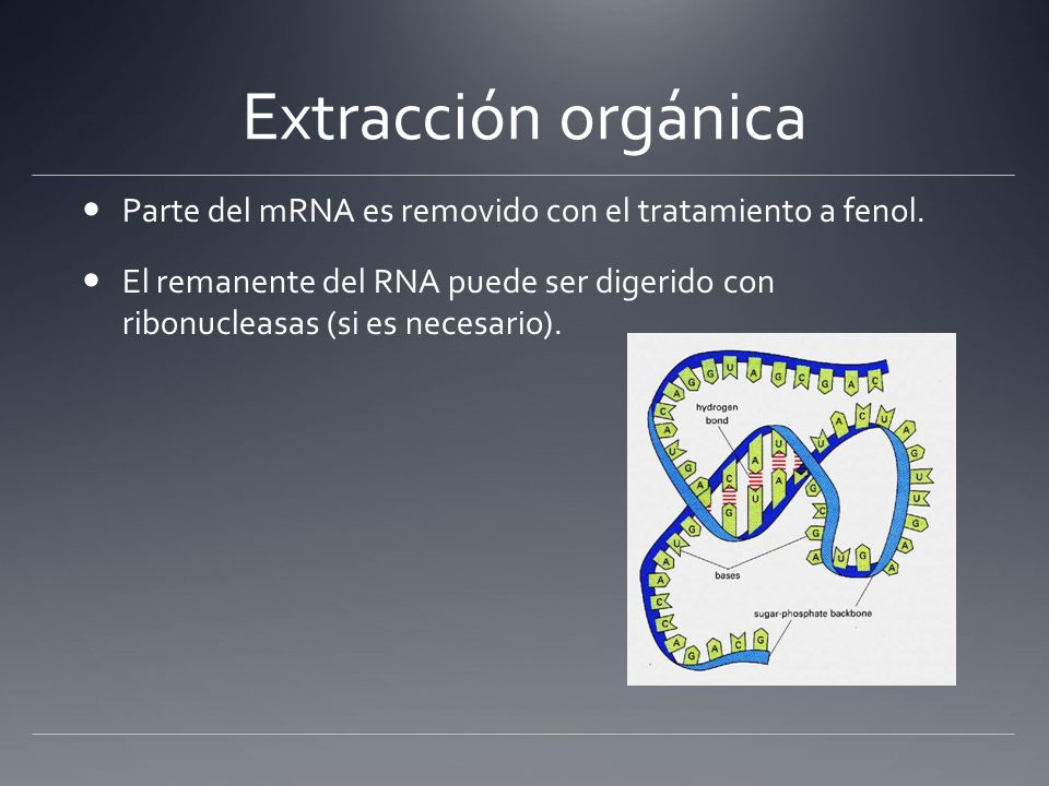 Concentration of DNA DNA Purification > Total Cell