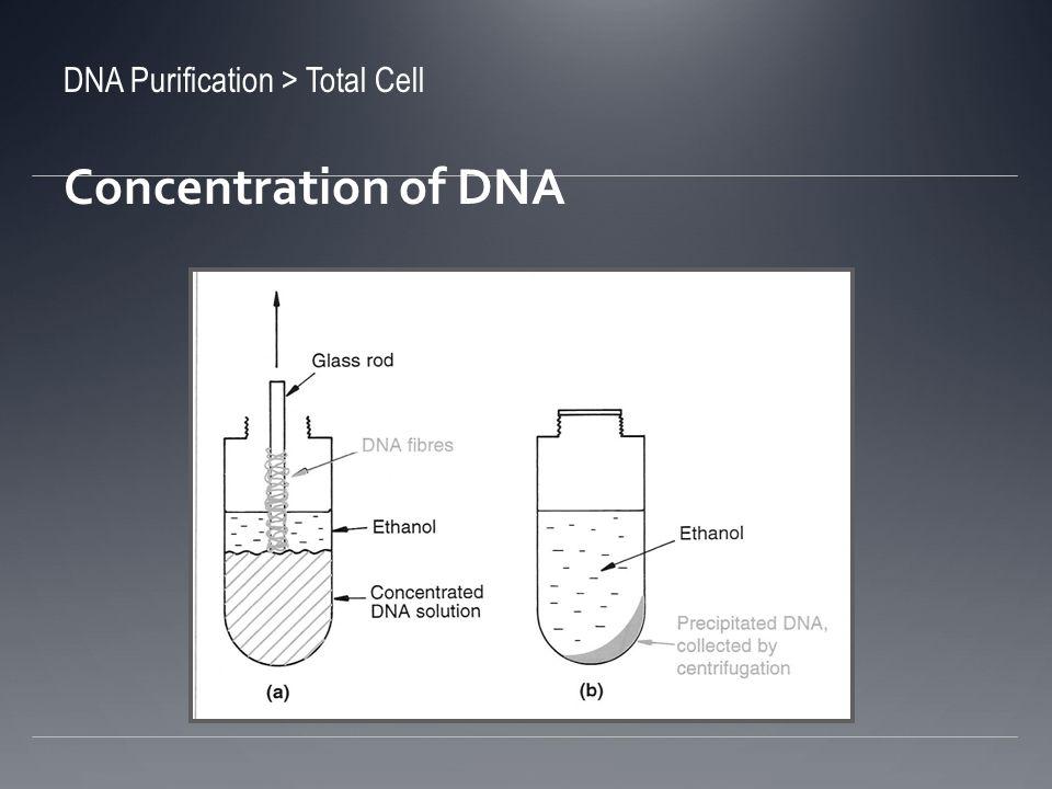 Extracción por Silica Guanidium thiocyanate Desnaturaliza el material que no es DNA Hace que el DNA se enlace a las partículas de silica Se añade silica directamente o la muestra se pasa por una columna de silica Remoción de DNA al añadir agua