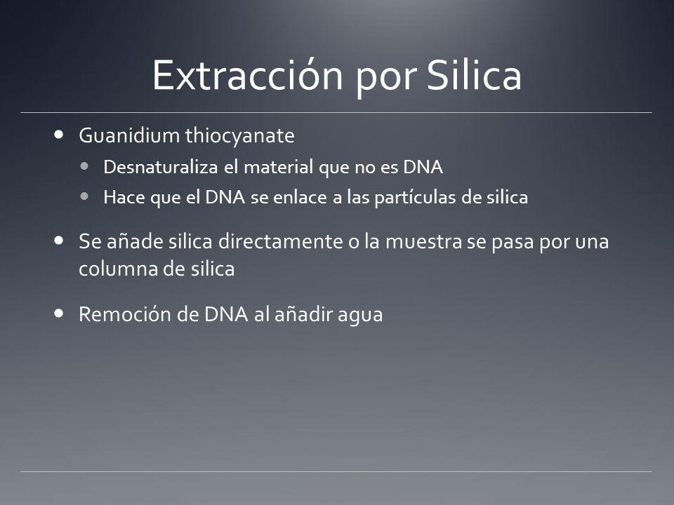 Purificación de DNA con partículas de silica DNA Purification > Total Cell > Purification